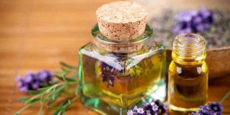 [Rendez-vous Santé] - La santé par les plantes : huiles essentielles